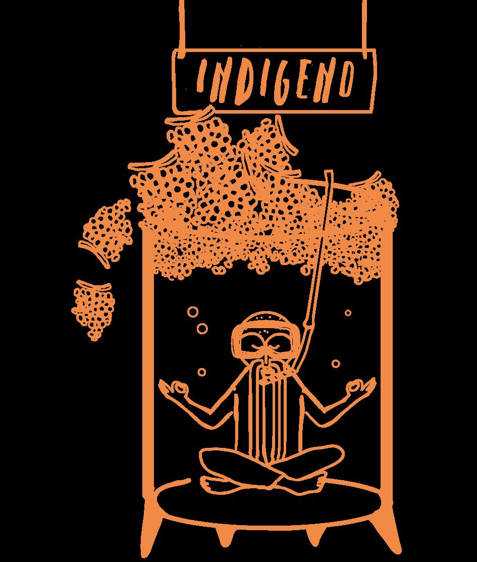 Etichetta Indigeno Macerato-01